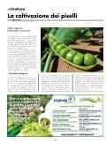 LE OFFERTE - Cooperativa Agricola di Legnaia - Page 4