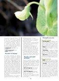 LE OFFERTE - Cooperativa Agricola di Legnaia - Page 6
