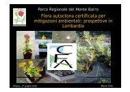 Flora autoctona certificata.pdf - Fondazione Minoprio