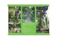 brochure alghe e muschi - Università degli Studi di Camerino