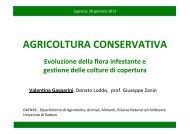 GASPARINI Agri Conservativa_Malerbe_30gennaio2013 - Veneto ...