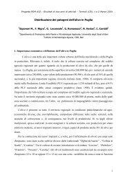 Distribuzione dei patogeni dell'olivo in Puglia - Facoltà di Agraria ...