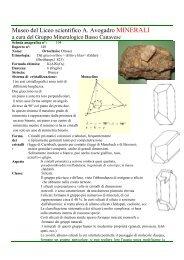 Ortoclasio. Silicato scheda n 104.pdf