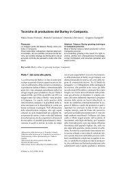 Tecniche di produzione del Burley in Campania. 29 - Inea