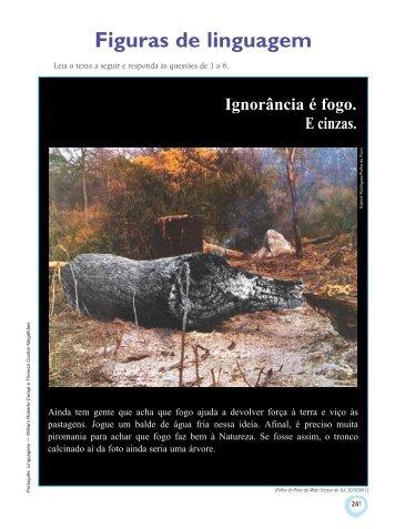 Figuras de linguagem - Editora Saraiva
