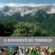 La Biodiversità del Terminillo - Lynx - Natura & Ambiente
