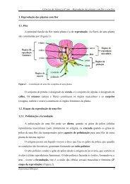 reprodução das plantas com flor e sem flor.pdf