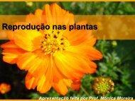 Reprodução nas plantas.pdf - Webnode