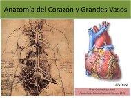 1.1-Anatomia del corazon y grandes vasos(modificado