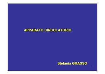 APPARATO CIRCOLATORIO Stefania GRASSO
