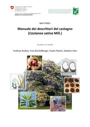 Manuale dei descrittori del castagno (Castanea sativa Mill.)