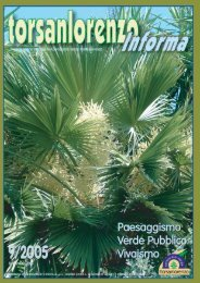 Le Palme - Torsanlorenzo Gruppo Florovivaistico
