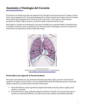 Anatomía y fisiología clínica del sistema cardiovascular