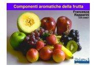 Componenti aromatiche della frutta - Cnr