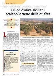 Gli oli d'oliva siciliani scalano le vette della qualità - Portale dell ...