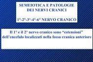 6° nervo cranico