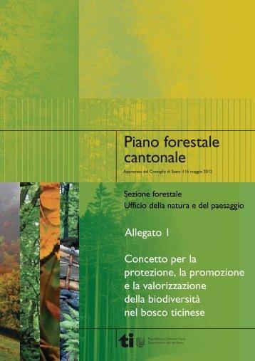 Rapporto di attuazione - Repubblica e Cantone Ticino