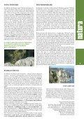 falesie di duino - Giro FVG - Page 7