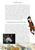 Progetto LIFE Natura Biarmicus Tutela degli habitat e dei rapaci del ... - Page 6
