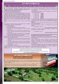 Rischio Sismico e Attività di Protezione Civile Rischio Sismico e ... - Page 4