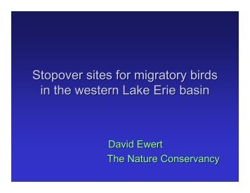 Identifying Stopover Sites for Migratory Birds in the Western Lake ...