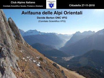 Avifauna delle Alpi orientali (rel. Davide Berton)