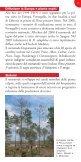 Il Nematode del pino - Regione Toscana - Page 3