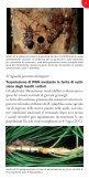 Il Nematode del pino - Regione Toscana - Page 5