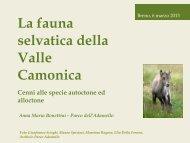 GEV - OFV - Lezione del 6 marzo 2013 - Docente Anna Bonettini