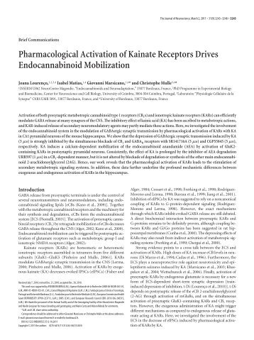 Pharmacological Activation of Kainate Receptors Drives ...
