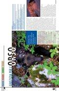La rivista dei Soci WWF www.pandaweb.it - Page 3