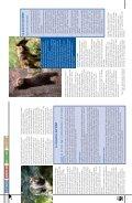 La rivista dei Soci WWF www.pandaweb.it - Page 4
