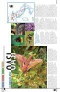 La rivista dei Soci WWF www.pandaweb.it - Page 6