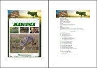 Calendario - Provincia di Reggio Emilia
