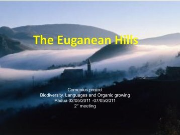 Geology and Environment of the Euganean Hills
