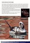 capanni fotografici, valorizzazione territoriale e ... - skua nature - Page 3
