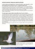 capanni fotografici, valorizzazione territoriale e ... - skua nature - Page 6