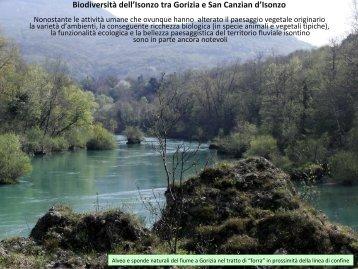 Merluzzi Pierpaolo - Autorità di Bacino dei fiumi dell'Alto Adriatico