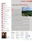 scarica il pdf - In Chianti - Page 3