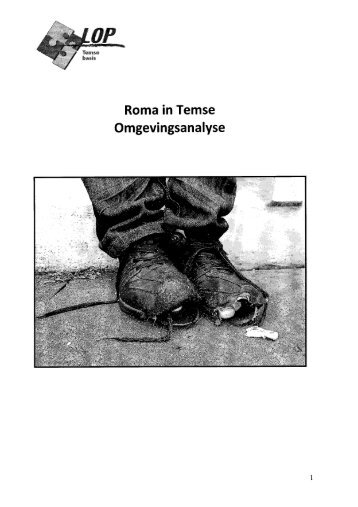 Page 1 Roma in Temse Omgevingsanalyse Page 2 1. Inleiding ...