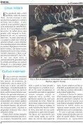 noiembrie-decembrie 2006 - Dacia.org - Page 6