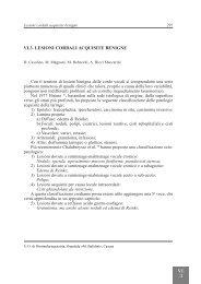 VI.3. LESIONI CORDALI ACQUISITE BENIGNE - AOOI