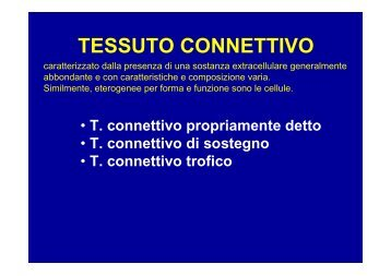 T. connettivo propriamente detto - ImageShack