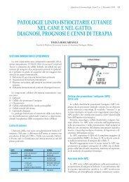 PATOLOGIE LINFO-ISTIOCITARIE CUTANEE NEL ... - Vet.Journal
