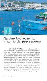 il ritorno del pesce povero - Sardegna Turismo