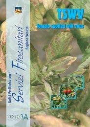scheda tswv.indd - Veneto Agricoltura