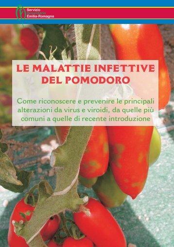 LE MALATTIE INFETTIVE DEL POMODORO - Ermes Agricoltura