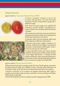 LE MALATTIE INFETTIVE DEL POMODORO - Ermes Agricoltura - Page 4