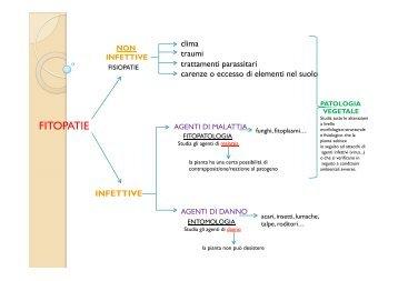 patologie di Miolo Eleonora 4C a.s. 2011-2012