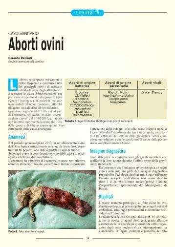 Caso sanitario. Aborti ovini - SIVeMP